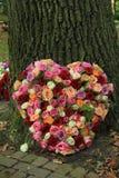 Hart gevormde sympathiebloemen stock foto's