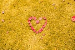 Hart in het gras Romantisch concept royalty-vrije stock foto's