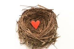 Hart in het nest Royalty-vrije Stock Foto