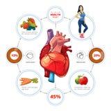Hart medische vectorinfographics vector illustratie