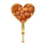 Hart met abrikozenkuilen Stock Fotografie