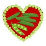 Hart, peulen en open erwten in peul op witte achtergrond vector illustratie