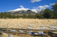 Hart Prairie and Mount Humphries. Mount Humphries, the tallest peak in Arizona, stands under a fresh blanket of snow as viewed from Hart Prairie Royalty Free Stock Photography