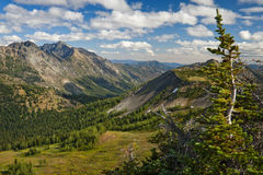 Hart's Pass, Washington. Located in the North Cascade Mountains this is the highest place you can drive to in Washington state. A beautiful panoramic overlook Stock Photography