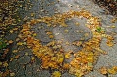 Hart van de herfst stock afbeeldingen