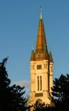 Hart van de kerk van Jesus Stock Fotografie