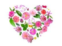 Hart van Geïsoleerde die de Zomer Roze Bloemen en Groene Bladeren wordt gemaakt Stock Afbeelding