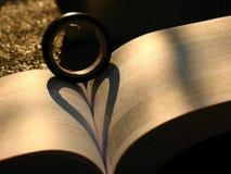 Hart van liefde in de dag van het valentijnskaartseizoen Stock Fotografie