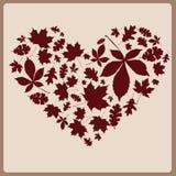 Hart van mooie de herfstbladeren Royalty-vrije Stock Foto's