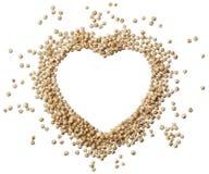 Hart van quinoa korrel op een witte achtergrond wordt geïsoleerd die Royalty-vrije Stock Afbeelding