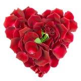 Hart van roze bloemblaadjes Stock Foto's