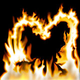 Hart van vlammen Stock Afbeeldingen