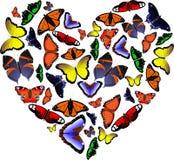 Hart van vlinders Stock Illustratie