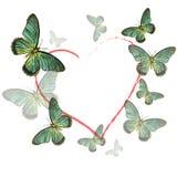 Hart van vlinders op witte achtergrond Stock Fotografie