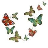 Hart van vlinders op witte achtergrond Stock Foto