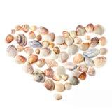 Hart voor de dag van de valentijnskaart van kleurenshells Stock Foto