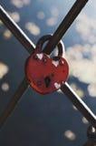 Hart-vormig huwelijksslot op metaalomheining stock foto