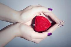 Hart in Vrouwenhanden. Rood Liefdesymbool Stock Afbeelding