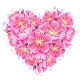 Hartachtergrond met sakura of kersenbloesem Bloemen Japans ornament van bloeiende bloemen royalty-vrije illustratie