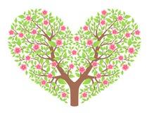Hartboom Stock Afbeeldingen