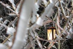Harter Raureif, gefrorene Baumwinter-Märchenlandlandschaft mit hängender Laterne Nebel- und Nebelhintergrund, einfrierender Nebel stockbilder