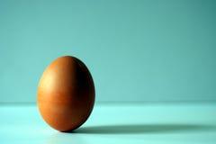 Hartes gekochtes Ei, auf Blau Stockbild