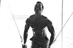 Hartes Training des Bodybuilders in der Gymnastik Stockfotografie