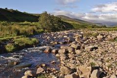 Harthope dal Northumberland England Royaltyfri Fotografi