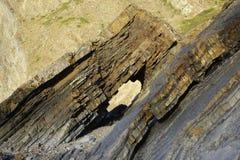 Hartland-cais Devon England Reino Unido das formações de rocha Fotos de Stock Royalty Free