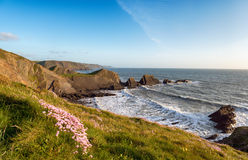 Hartland Quay in Devon Royalty Free Stock Photography