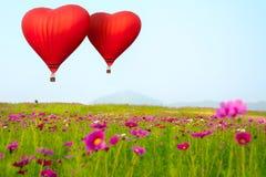 Hartvorm het ballooning stock fotografie