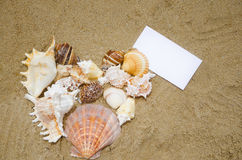 Hartvorm met document kaart op het strand Royalty-vrije Stock Foto