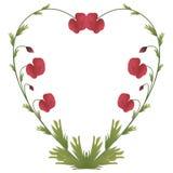 Hartvorm met papavers Royalty-vrije Stock Foto's