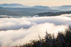 Hartz Mountains National Park, Tasmania Stock Photos