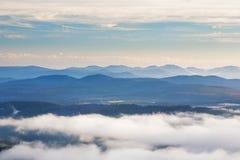 Hartz Mountains National Park, Tasmania Royalty Free Stock Photo