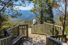 Hartz mountains national park: waratah lookout, Tasmania Australia. A visitor looks out from waratah lookout in the Harts mountains national park Tasmania royalty free stock image