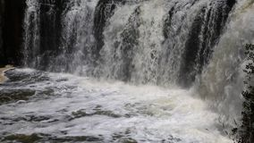 Haruru Falls. Landscape with Haruru Falls, New Zealand stock footage