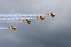 Harvard airplanes Stock Photo