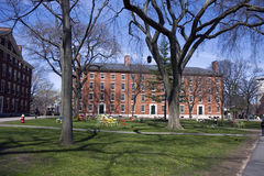 Harvard campus Royalty Free Stock Images