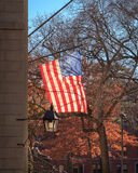 Harvard flagga Royaltyfri Bild