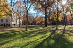 Harvard gård Royaltyfri Fotografi