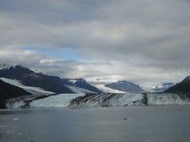 Harvard glaciär på slutet av högskolafjorden Alaska Bred glaciär som snider dess bana till havet Berg når en höjdpunkt vatten och royaltyfria bilder