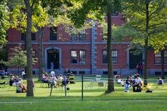 Harvard jarda scena obraz stock