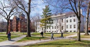 Harvard kampus w wiośnie fotografia stock