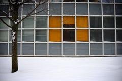 Harvard Lab Building in Winter Coat Stock Photo