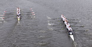 Harvard (left) and Yale (right) races in the Head of Charles Regatta Men's Master Eights Royalty Free Stock Photos