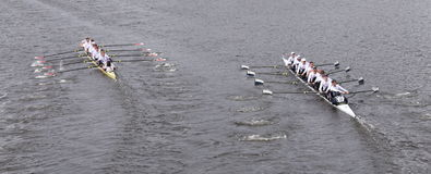 Harvard (left) and Yale (right) races in the Head of Charles Regatta Men's Master Eights Stock Photography