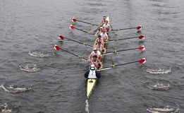Harvard Men win head of the charles Royalty Free Stock Photos