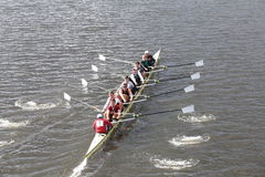 Harvard races in the Head of Charles Regatta Men's Master Eights Stock Photography