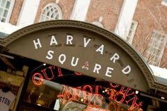 Harvard Square royalty free stock photos